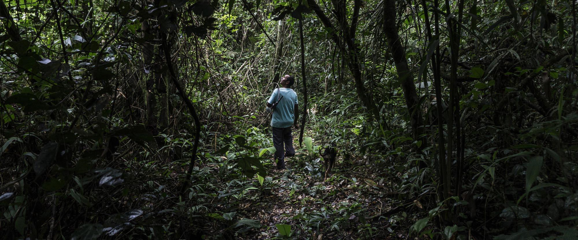 10 anos de aprendizados e trocas com os povos da floresta