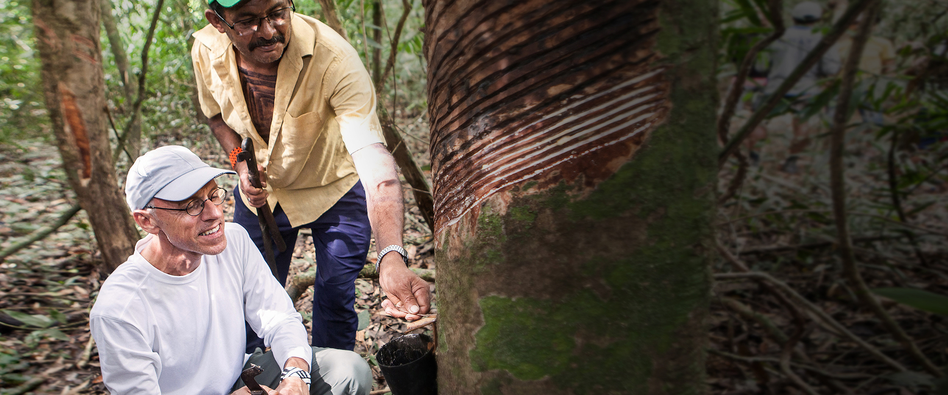 Projeto Borracha Nativa – Mercur alia responsabilidade ambiental e conhecimentos tradicionais da Amazônia